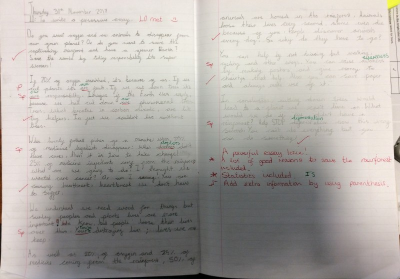 December 2017 – 5C Save the rainforest writing